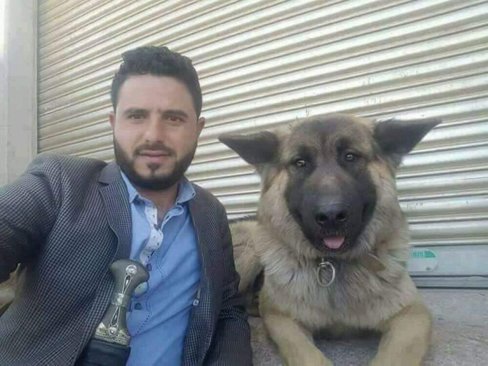 كلب حراسة رئيس يمني سابق يرفض مغادرة مكانه و مواطنون يلتقطون صوراً معه.. صورة