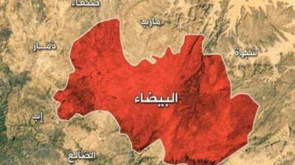 شاهد .. مقطع يحبس الأنفاس يظهر كيف نجا إبن قائد عسكري كبير من وابل رصاص 20 مقاتلاً من عناصر الحوثي