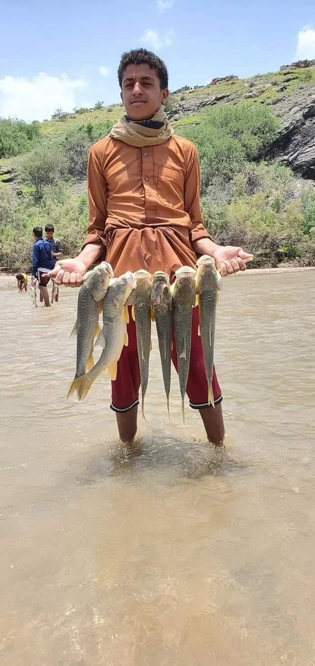 شباب يصطادون الأسماك من سد مأرب بعد أن فاض بمياه سيول الأمطار .. صورة